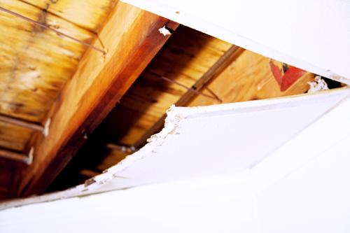 Austin water damage repair